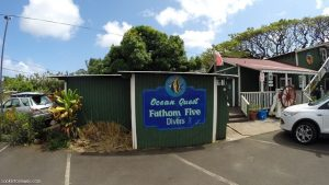 fathom five divers shop